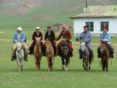 Horses in Muren Bag